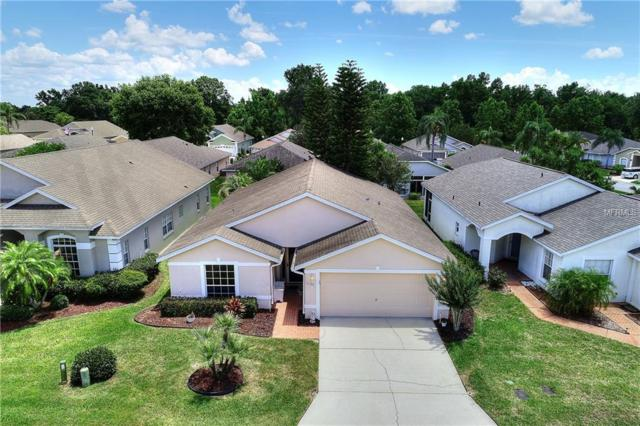 1120 High Vista Dr, Davenport, FL 33837 (MLS #S5017817) :: Team Bohannon Keller Williams, Tampa Properties
