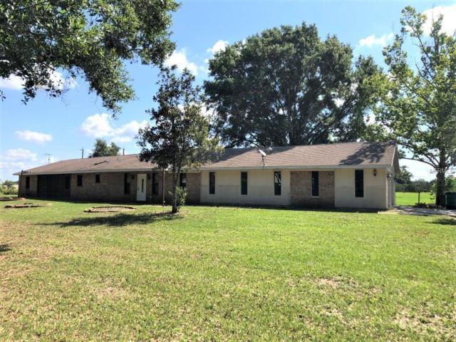 2800 Windsong Lane, Saint Cloud, FL 34772 (MLS #S5017878) :: Team Bohannon Keller Williams, Tampa Properties