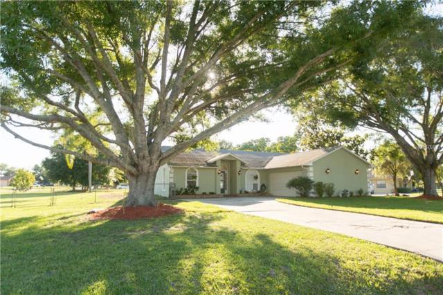 1729 Jan Lan Boulevard, Saint Cloud, FL 34772 (MLS #S5017981) :: Team Bohannon Keller Williams, Tampa Properties