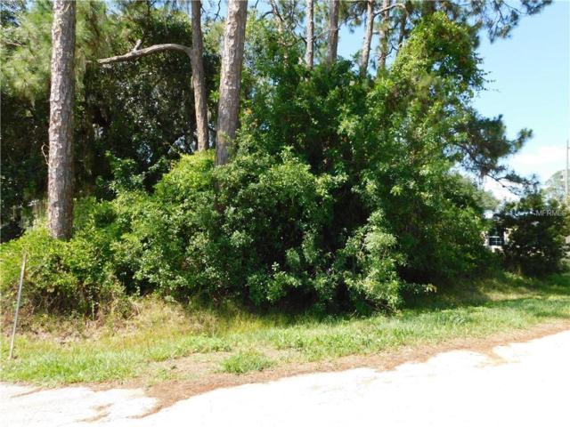 Central Avenue, Saint Cloud, FL 34771 (MLS #S5018007) :: Lockhart & Walseth Team, Realtors