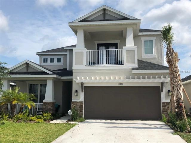 8025 Marbella Creek Avenue, Tampa, FL 33625 (MLS #S5018120) :: Team TLC | Mihara & Associates