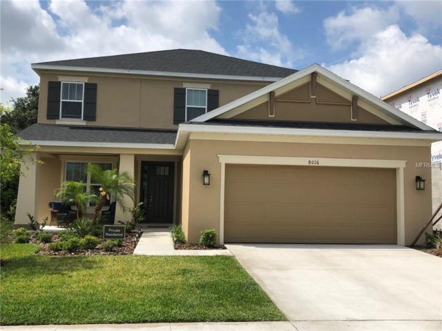8016 Marbella Creek Avenue, Tampa, FL 33625 (MLS #S5018124) :: Team TLC | Mihara & Associates