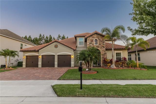 4975 Cypress Hammock Drive, Saint Cloud, FL 34771 (MLS #S5018400) :: Team 54