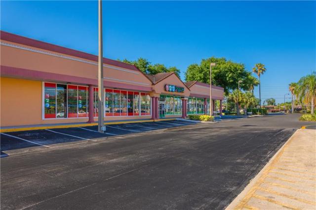 2905 Vineland Road, Kissimmee, FL 34746 (MLS #S5018447) :: The Figueroa Team