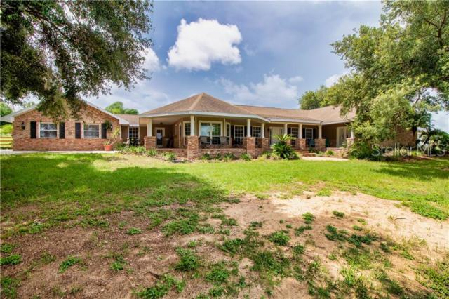 8021 Lake Nellie Road, Clermont, FL 34714 (MLS #S5019353) :: RealTeam Realty