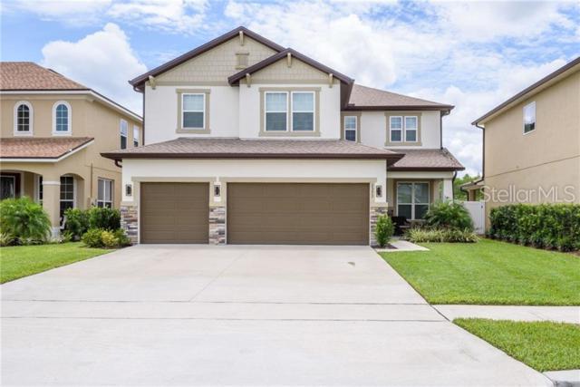 3373 Cordgrass Place, Harmony, FL 34773 (MLS #S5019438) :: Team Bohannon Keller Williams, Tampa Properties