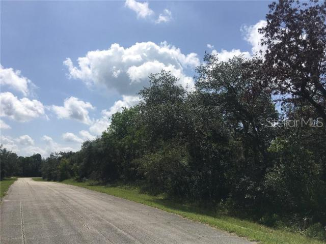 Address Not Published, Poinciana, FL 34759 (MLS #S5019634) :: The Duncan Duo Team