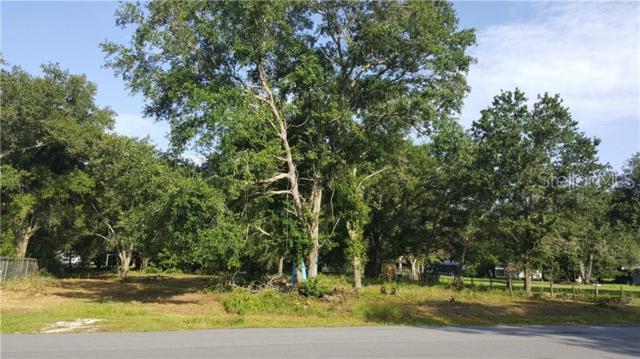 260 3RD Avenue, Kenansville, FL 34739 (MLS #S5019658) :: Premier Home Experts