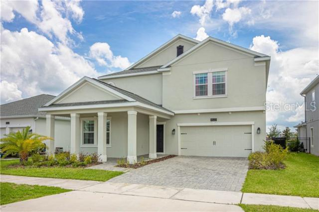 4620 Fairy Tale Circle, Kissimmee, FL 34746 (MLS #S5019680) :: Premium Properties Real Estate Services