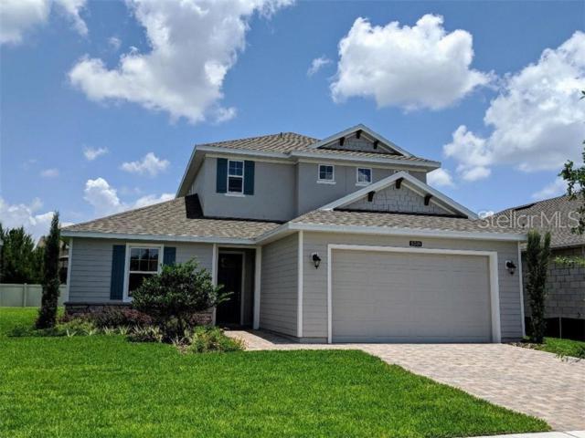 5205 Tracie Way, Saint Cloud, FL 34771 (MLS #S5019723) :: Griffin Group