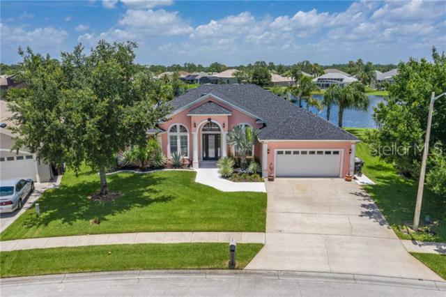 3316 Countryside View Drive, Saint Cloud, FL 34772 (MLS #S5019796) :: Armel Real Estate