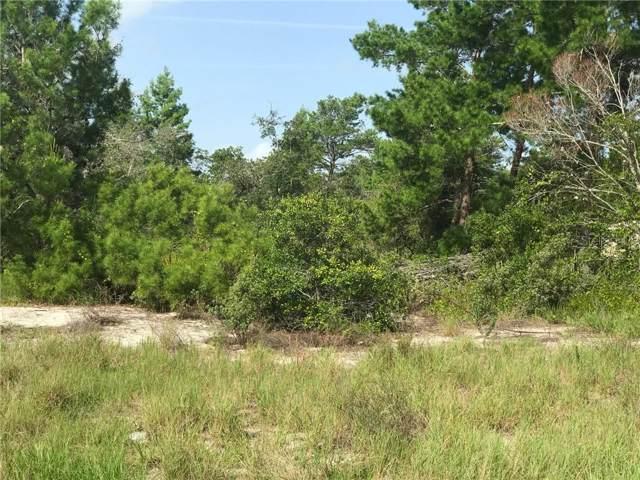34 Magnolia Blossom Lane, Poinciana, FL 34759 (MLS #S5020654) :: Team Bohannon Keller Williams, Tampa Properties