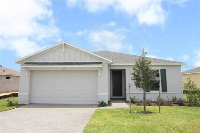 613 Black Eagle Drive, Groveland, FL 34736 (MLS #S5020688) :: Team 54