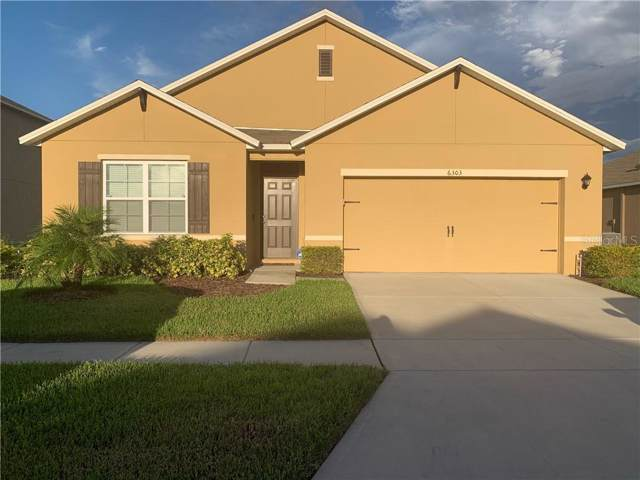 6303 Red Herring Drive, Winter Haven, FL 33881 (MLS #S5022464) :: Cartwright Realty