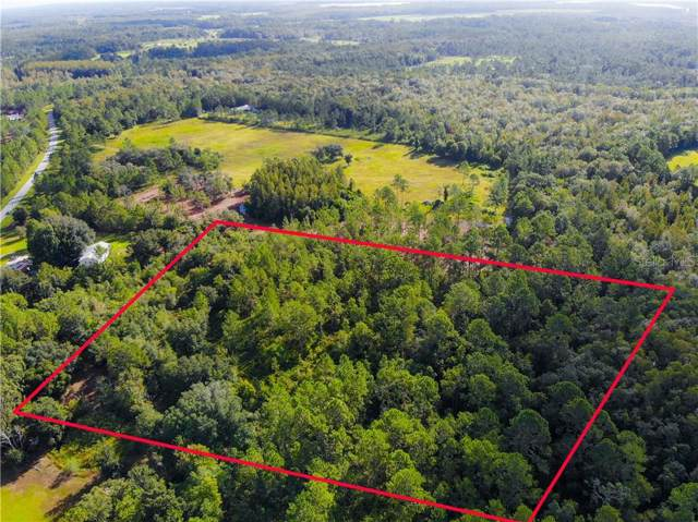 6814 Oil Well Road, Clermont, FL 34714 (MLS #S5022890) :: The Light Team