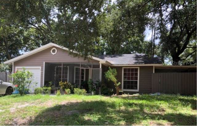 737 Lakeview Drive, Ocoee, FL 34761 (MLS #S5022895) :: Bustamante Real Estate