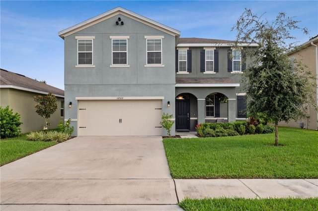 16523 Centipede Street, Clermont, FL 34714 (MLS #S5023736) :: The Light Team