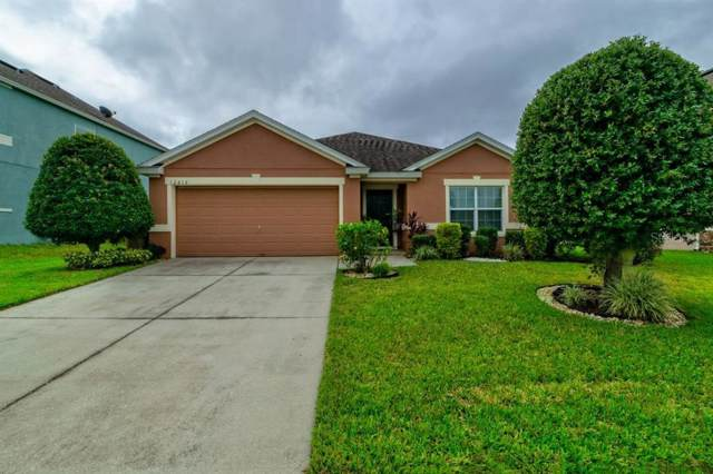 12816 Fish Lane, Clermont, FL 34711 (MLS #S5024856) :: Cartwright Realty