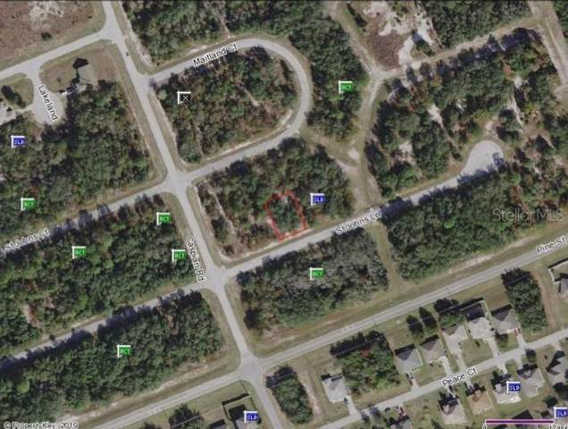 St Johns Lane, Poinciana, FL 34759 (MLS #S5024933) :: Alpha Equity Team