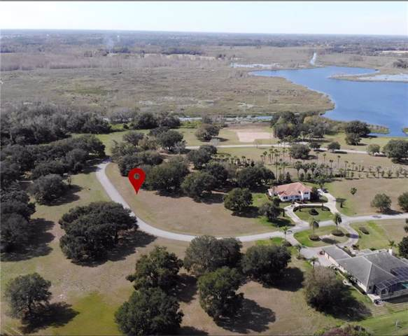 Lot 68 Royal Palm Drive, Groveland, FL 34736 (MLS #S5024939) :: RE/MAX Realtec Group
