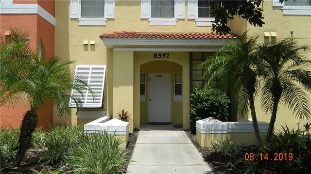 8557 Crystal Cove Loop, Kissimmee, FL 34747 (MLS #S5025021) :: Zarghami Group