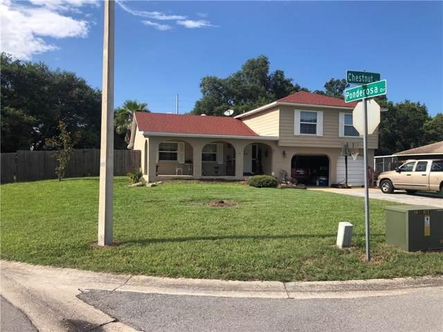 401 Chestnut Street, Saint Cloud, FL 34769 (MLS #S5025868) :: Griffin Group