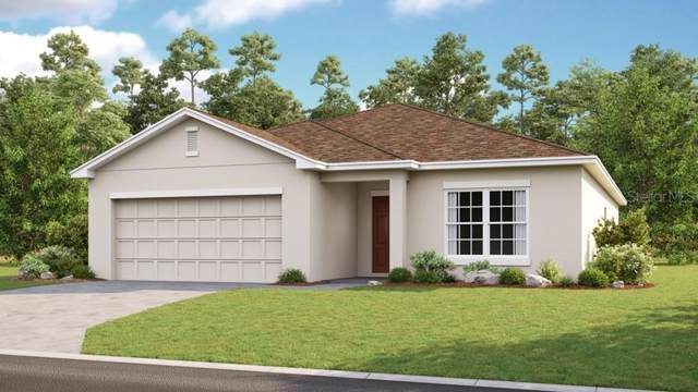 733 Ogelthorpe Drive, Davenport, FL 33897 (MLS #S5027039) :: The Duncan Duo Team