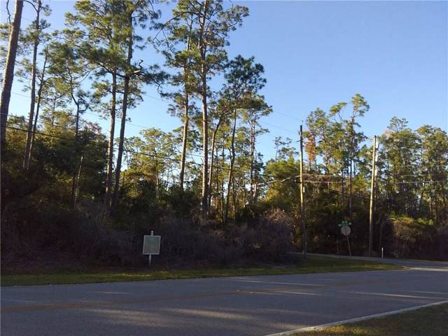 12900 Lake Mary Jane Road, Orlando, FL 32832 (MLS #S5027128) :: Florida Life Real Estate Group