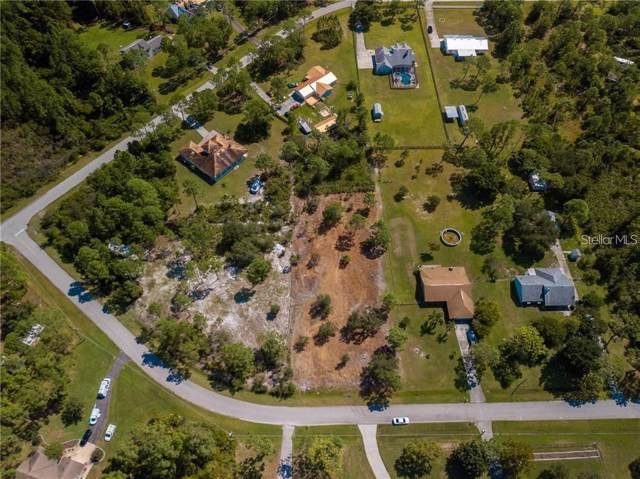 Running Horse Trail, Saint Cloud, FL 34771 (MLS #S5027211) :: Cartwright Realty