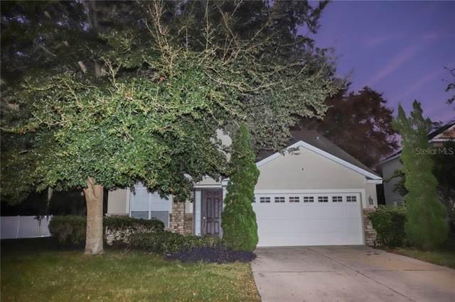 3377 Oak Brook Lane, Eustis, FL 32736 (MLS #S5027363) :: Team Pepka