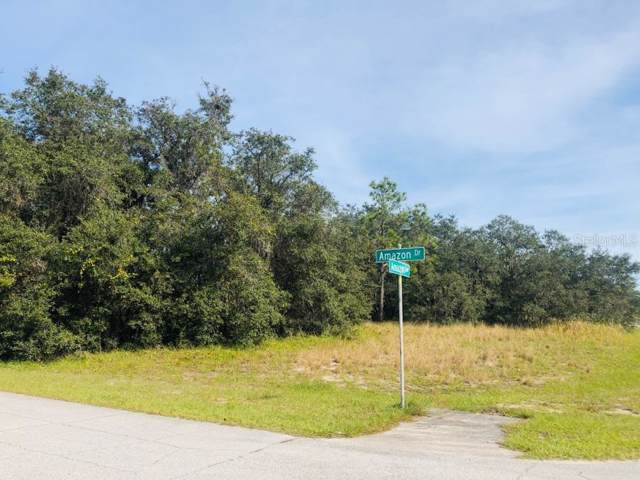 1225 Amazon Drive, Poinciana, FL 34759 (MLS #S5027477) :: Rabell Realty Group