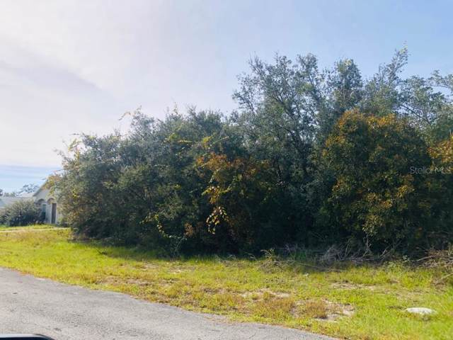 1212 Amazon Lane, Poinciana, FL 34759 (MLS #S5027527) :: Rabell Realty Group