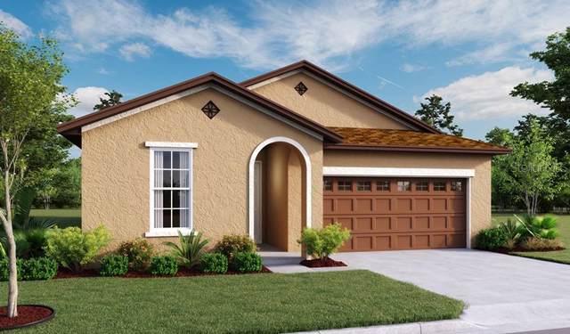 257 Summershore Drive, Auburndale, FL 33823 (MLS #S5027628) :: Team Bohannon Keller Williams, Tampa Properties