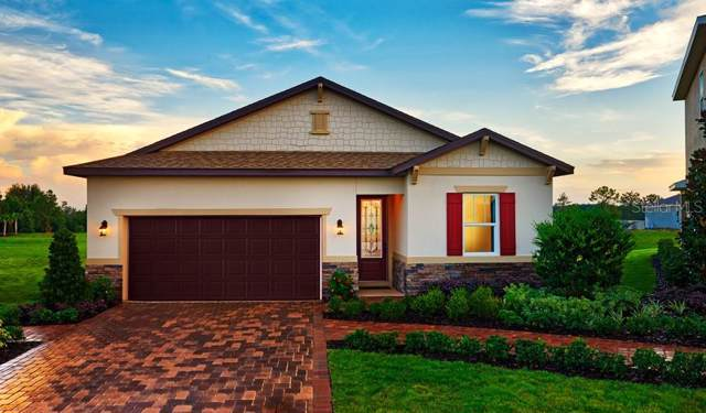 2008 Sloans Outlook Drive, Groveland, FL 34736 (MLS #S5027636) :: Griffin Group