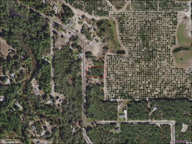 Deer Road, Frostproof, FL 33843 (MLS #S5028110) :: Homepride Realty Services
