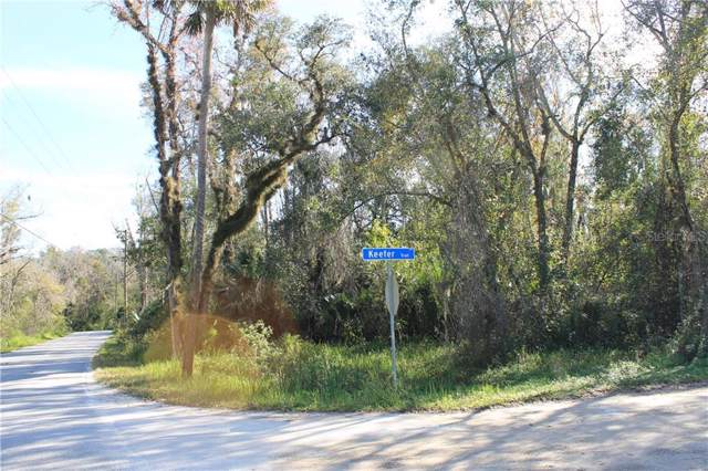 Keefer Trail, Kissimmee, FL 34747 (MLS #S5028334) :: 54 Realty