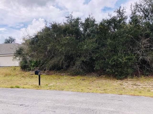 1206 Alafia Drive, Poinciana, FL 34759 (MLS #S5028794) :: Team Bohannon Keller Williams, Tampa Properties