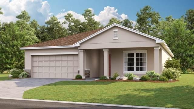 14317 Hidden Court, Clermont, FL 34711 (MLS #S5028874) :: Team Bohannon Keller Williams, Tampa Properties