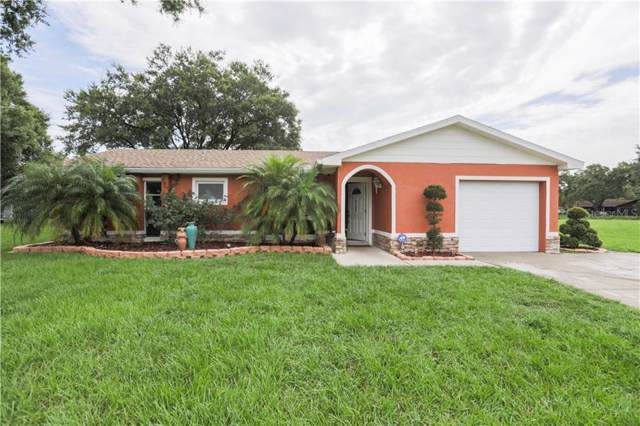 5160 Misty Lake Drive, Mulberry, FL 33860 (MLS #S5028885) :: Gate Arty & the Group - Keller Williams Realty Smart