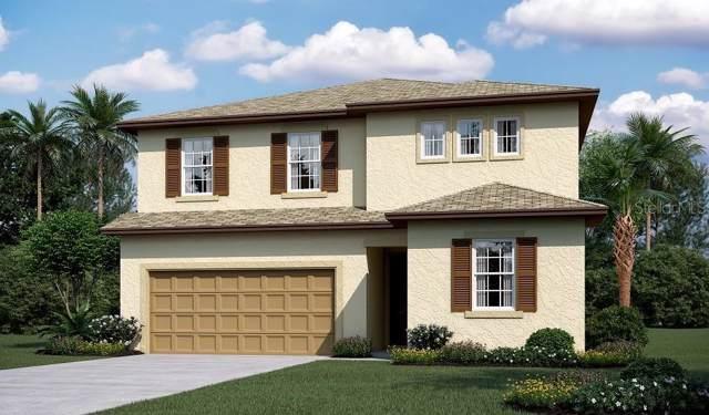 2450 Bittle Way, Saint Cloud, FL 34769 (MLS #S5028968) :: BuySellLiveFlorida.com