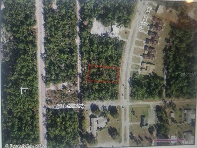 Deland Avenue, Lake Wales, FL 33855 (MLS #S5029838) :: Homepride Realty Services