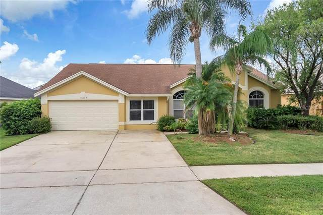 11018 Orangeshire Court, Ocoee, FL 34761 (MLS #S5030216) :: RE/MAX Premier Properties