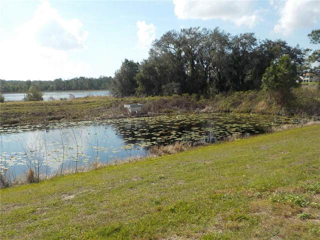 16745 Meadows Street, Clermont, FL 34714 (MLS #S5030330) :: Griffin Group