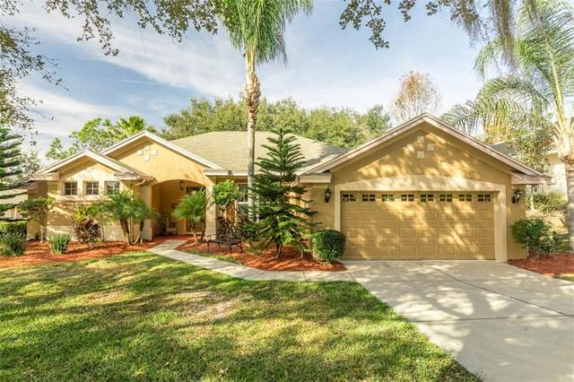 13224 Via Roma Circle, Clermont, FL 34711 (MLS #S5030628) :: Cartwright Realty