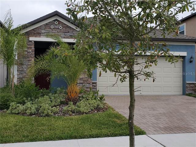 9611 Ivory Drive, Ruskin, FL 33573 (MLS #S5030723) :: Griffin Group