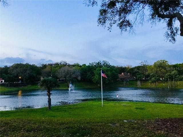 212 Mallard Street, Altamonte Springs, FL 32701 (MLS #S5031138) :: Premium Properties Real Estate Services