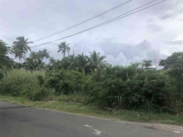 Calle Hogar El Paraiso, VEGA ALTA, PR 00692 (MLS #S5031237) :: The Duncan Duo Team