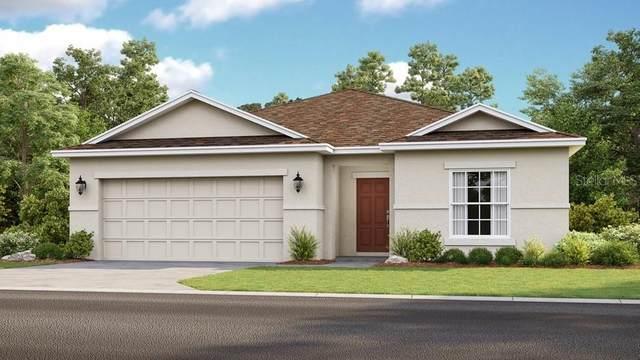 14431 Hidden Court, Clermont, FL 34711 (MLS #S5031336) :: Team Bohannon Keller Williams, Tampa Properties