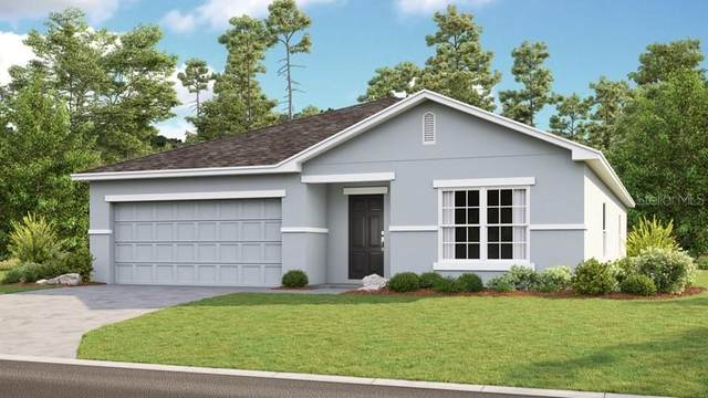 14360 Hidden Court, Clermont, FL 34711 (MLS #S5031337) :: Team Bohannon Keller Williams, Tampa Properties