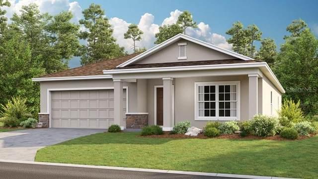 14392 Hidden Court, Clermont, FL 34711 (MLS #S5031341) :: Team Bohannon Keller Williams, Tampa Properties